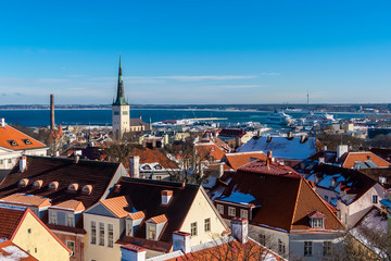 Wall Mural - The roofs of the houses of old Tallinn