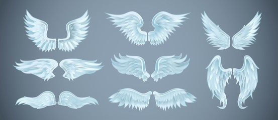 Set of angel wings with different shapes. Vector illustration