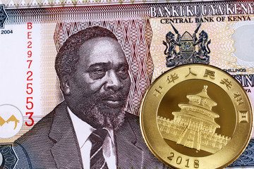 A close up image of a shiny gold Chinese Panda coin with a fifty shilling bank note from Kenya. Wall mural
