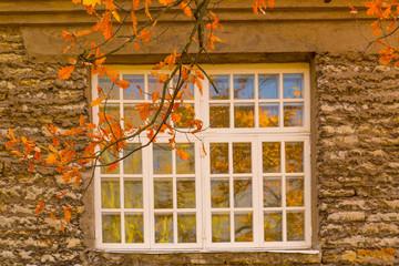 Europe, Eastern Europe, Baltic States, Estonia, Tallinn. Old town, window reflecting Autumn leaves.
