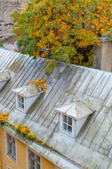 Europe, Eastern Europe, Baltic States, Estonia, Tallinn. Rooftops near city walls.