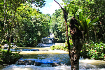 Saint Elizabeth waterfalls, Jamaica