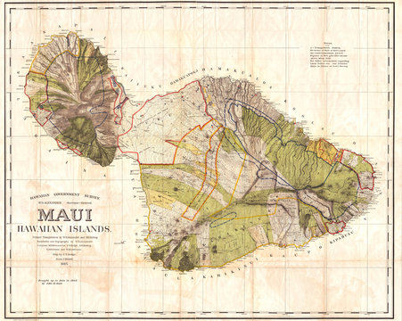 1885, De Witt Alexander Wall Map of Maui, Hawaii