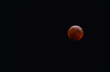 Super Blood Wolf Moon during total lunar eclipse at totality