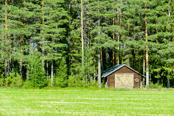 house in the forest, in Sweden Scandinavia North Europe
