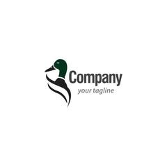 Duck Logo vector template