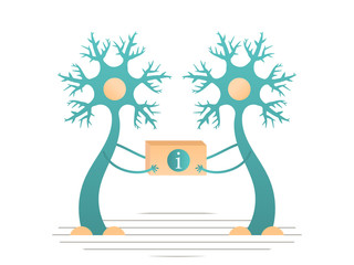 Neurons transmit information to the brain. Vector flat illustration.