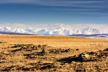 Winter landscape of Mongolia. White mountain background and yellow valley