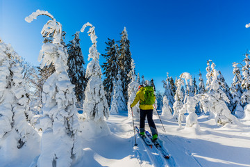 Wall Mural - Ski in Beskidy mountains. The skituring man, backcountry skiing in fresh powder snow.