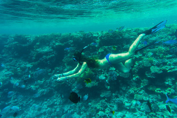 Young woman snorkeling in a tropical sea and feeding color fish