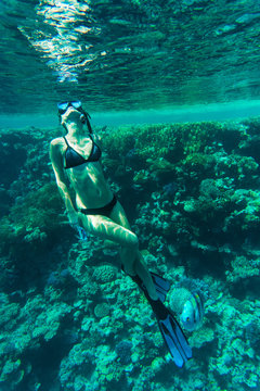 Young woman snorkeling in a sea over coral reef
