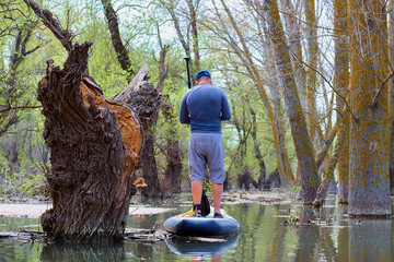 Man on stand up paddle boarding (SUP) paddling among flooded trees in wilderness areas at Danube river among flooded trees in forest at spring high water on Danube biosphere reserve. Back view