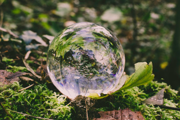 Crystal photography ball in woodland setting - landscape
