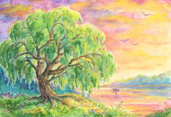Willow tree near water - landscape painting