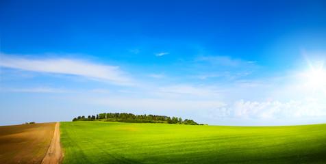 sunny blue sky over spring farmland green field
