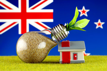 Plant growing inside the light bulb, miniature house on the grass and New Zealand Flag. Renewable energy. Electricity prices, energy saving in the household.