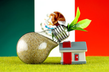 Plant growing inside the light bulb, miniature house on the grass and Mexico Flag. Renewable energy. Electricity prices, energy saving in the household.