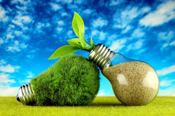 Green eco light bulb with grass, plant growing inside the light bulb and blue sky background. Renewable energy concept.