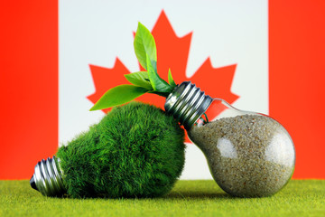 Green eco light bulb with grass, plant growing inside the light bulb, and Canada Flag. Renewable energy. Electricity prices, energy saving in the household.