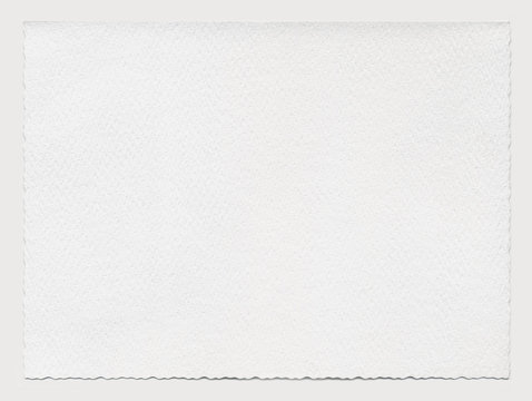 Sheet of paper with a wavy edges. Highly detailed, isolated on gray
