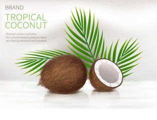 Tropical coconut realistic vector, whole and broken half coco nut and green palm leaves on white glossy background. Mock up banner or packaging design for natural products or organic cosmetics