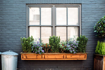 Beautiful windows with flowers on a black facade house Wall mural