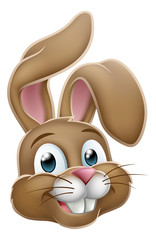 Easter bunny cute rabbit cartoon character face graphic illustration