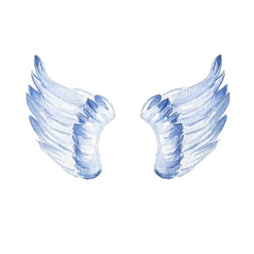 Hand drawn watercolor short wings isolated on white background.