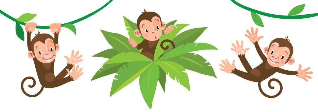 Little funny monkeys on lians. Illustrations set
