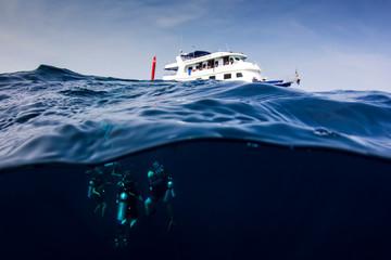 Scuba diving half and half split photo