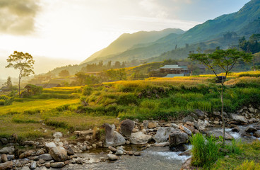Beautiful Panorama of growing golden paddy rice field with stream flows through into Tavan local village and fansipan mountain on background in the morning, Sapa, Laocai , Northwest of Vietnam