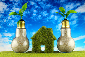 Plants growing inside the light bulbs and green eco house icon on the grass and blue sky background. Renewable energy concept. Electricity prices, energy saving in the household.