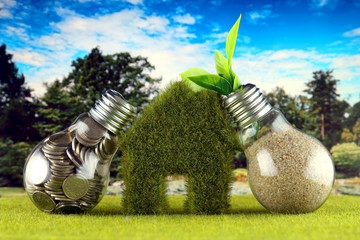 Coins inside the light bulb, plant growing inside the light bulb and miniature house with grass. Green eco renewable energy concept. Electricity prices, energy saving in the household.
