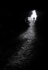 mysterious man on a path