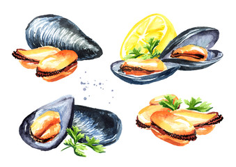 Mussels with lemon and herbs set, seafood, Watercolor hand drawn illustration, isolated on white background