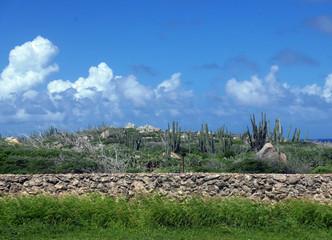 Landscape in Aruba