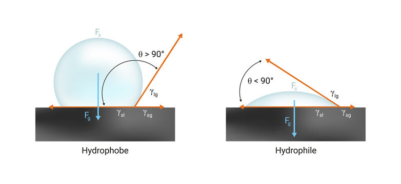 Vector physics scientific icon or illustration of surface tension. Hydrophilic and hydrophobic wetting the solid surface with liquid. Contact angle < 90° and > 90°. Illustration is isolated on white.