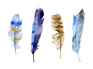 Set of colorful watercolor feathers on white background in vector format. Hand drawn tribal pen illustration. Nib in boho style.