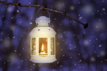 Lantern with a candle in a winter forest on a tree branch at night during snowfall_