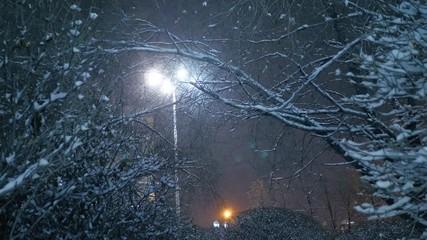 Fotobehang - Snow falling on trees of night winter city park. Yekaterinburg, Russia. Slow motion, 4K UHD.