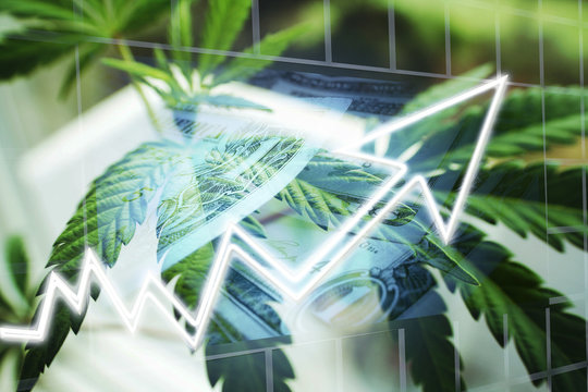Marijuana Stocks Exploding With Marijuana Leaves High Quality Stock Photo