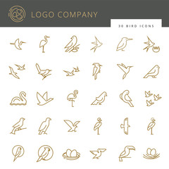 Flat birds icon set. Vector flat simple minimalistic bird logo. Birds icon, animal sign, symbol isolated on white background. Nature park, national zoo, pet shop logo, animal food store logo.