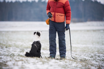 Man with border collie dog