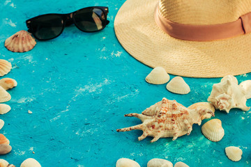 Summer composition with sea shells, concept of travel and vacation