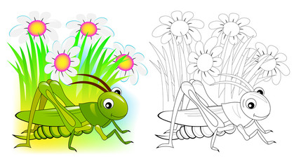 Fantasy illustration of cute cricket. Colorful and black and white page for coloring book. Printable worksheet for children and adults. Vector cartoon image.