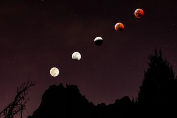 Blood Wolf Moon Eclipse