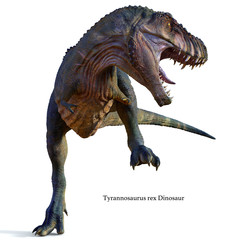 Tyrannosaurus Male Dinosaur with Font - Tyrannosaurus was a carnivorous theropod dinosaur that lived in North America during the Cretaceous Period.