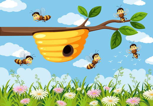 Bee in the nature background