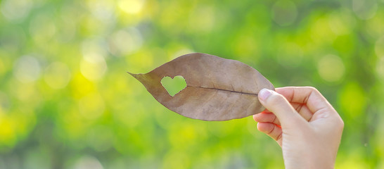Woman hand holding dried leaf with heart shape on green natural background in the garden outdoor. Social Responsibility Love and  Happy Valentine's Day concepts