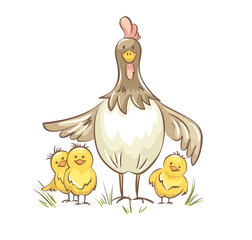 Chicken family. Vector illustration, Funny chicken with chickens